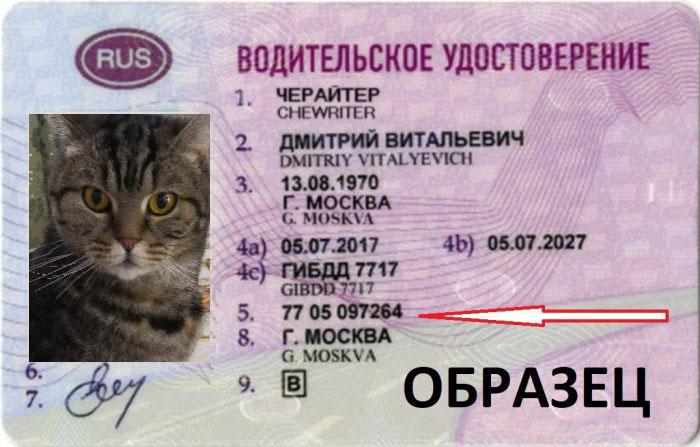 Водительско удостоверение